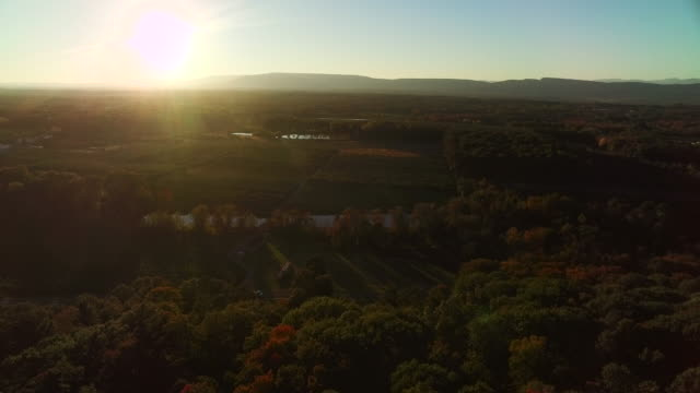aerial view of beautiful fall foliage - new paltz stock videos and b-roll footage