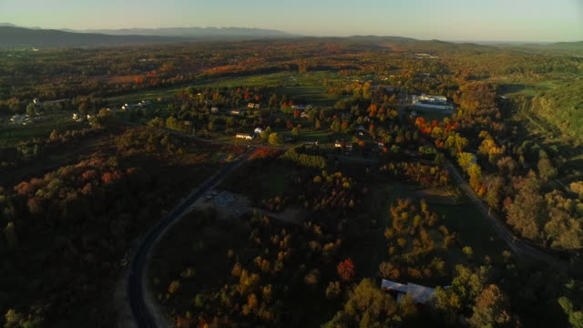 Aerial view of beautiful fall foliage