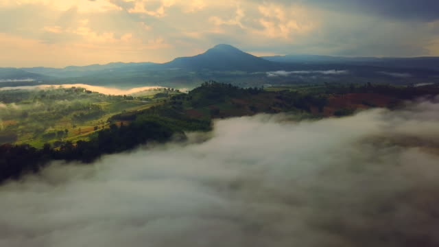 vídeos de stock e filmes b-roll de aerial view of beautiful in the morning with sea-fog over valley at north in thailand - vale