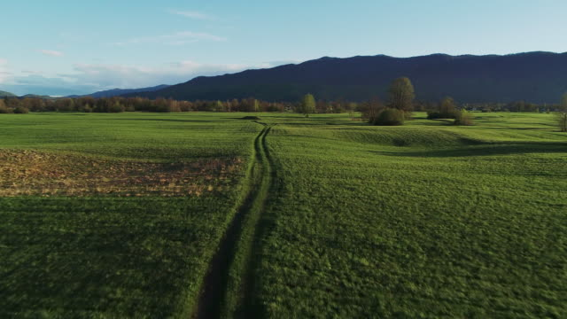 aerial view of beautiful meadow landscape at sunset - tire track stock videos & royalty-free footage