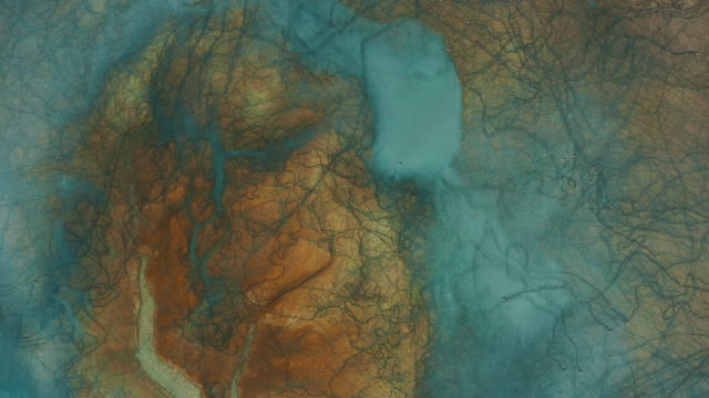 aerial view of beautiful natural shapes and textures - motivo naturale video stock e b–roll