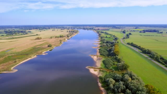"aerial view of biosphere reserve ""niedersächsische elbtalaue"" and river elbe in lower saxony, germany - riverbank stock videos & royalty-free footage"