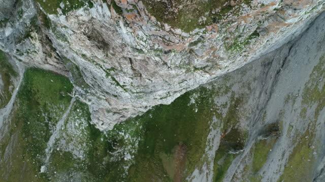 aerial view of bird cliffs at gnålodden, svalbard - circolo artico video stock e b–roll