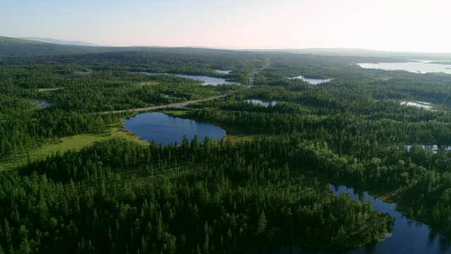 aerial view of blue lakes and green forests on a sunny summer day in finland. - finlandia video stock e b–roll