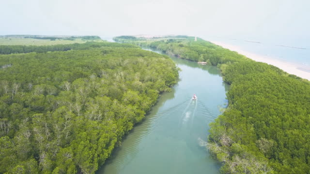 aerial view of boats sailing in rivers along tropical mangrove forests - water conservation stock videos & royalty-free footage