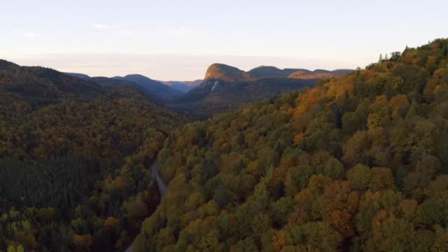 秋の季節の森林の自然の空中写真, ケベック州, カナダ - 寒帯林点の映像素材/bロール