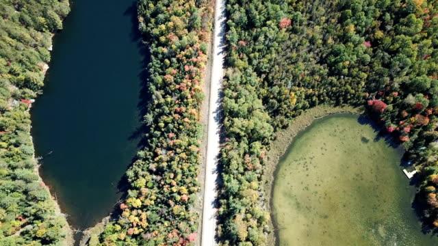 秋季のボレアル森林自然の空中写真、ケベック、カナダ - 寒帯林点の映像素材/bロール