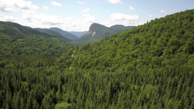 vista aerea della foresta naturale boreale e della montagna in estate - zoom in avanti video stock e b–roll