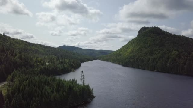 Aerial View of Boreal Nature Forest and River in Summer