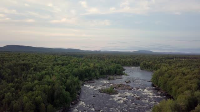 vídeos y material grabado en eventos de stock de vista aérea del bosque boreal de la naturaleza y el río en verano - pantano zona húmeda