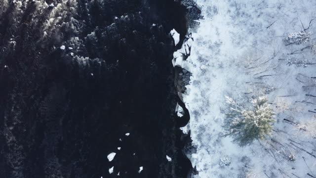 自然林と冬、カナダ ケベック州の川の空撮 - 寒帯林点の映像素材/bロール