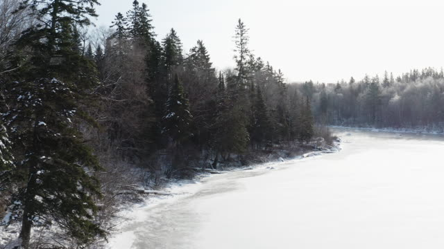 aerial view of boreal nature forest and river in winter, quebec, canada - canada stock videos & royalty-free footage