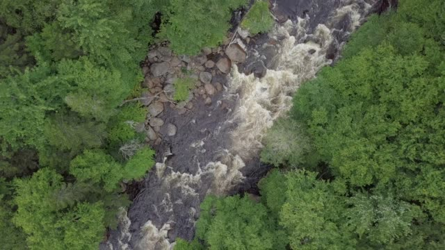 aerial view of boreal nature forest river and waterfall in summer - quebec stock videos & royalty-free footage