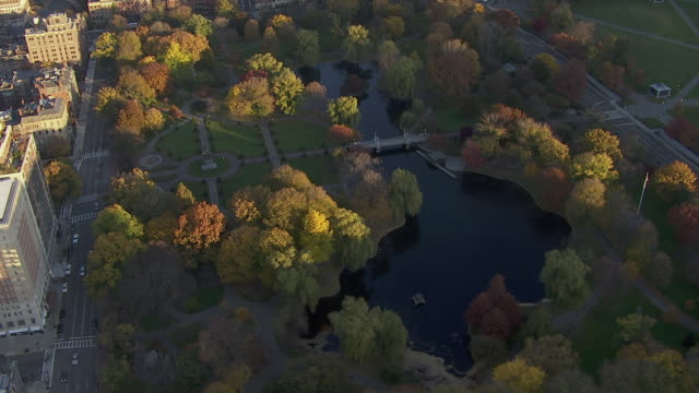 aerial view of boston public garden with autumn trees, boston, massachusetts, united states of america - boston massachusetts stock-videos und b-roll-filmmaterial