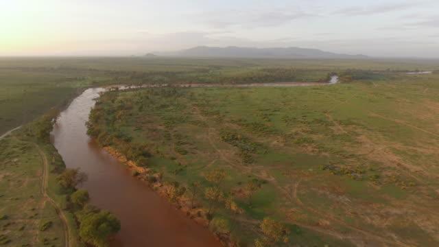 vídeos y material grabado en eventos de stock de aerial view of brown river in african bush land - bush land
