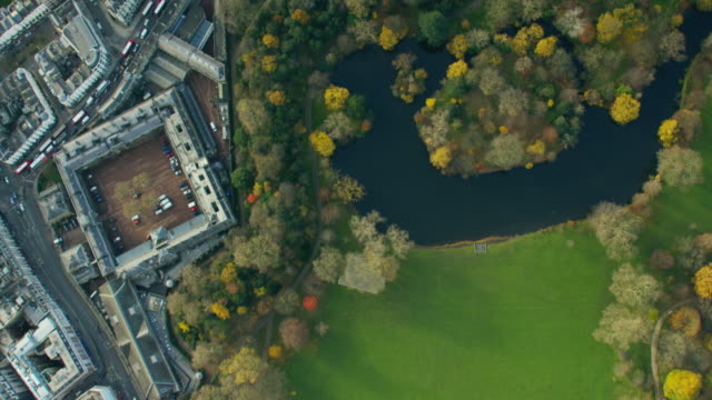 aerial view of buckingham palace london england - newcastle upon tyne stock-videos und b-roll-filmmaterial