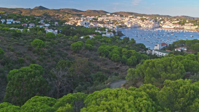 aerial view of cadaques - pine woodland stock videos & royalty-free footage