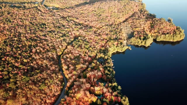 aerial view of canadian national park in autumn - national park stock videos & royalty-free footage