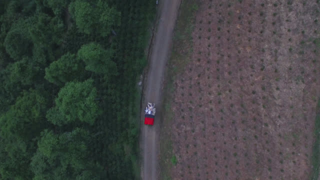 aerial view of car on the country road fully loaded with coffee sacks - farm worker stock videos & royalty-free footage