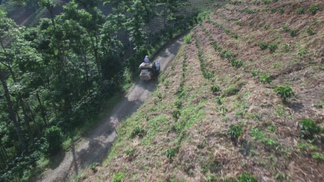 Aerial view of car on the country road fully loaded with coffee produce