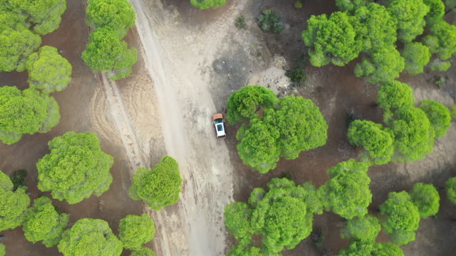 aerial view of car on winding forest road in wilderness - off road racing stock videos & royalty-free footage