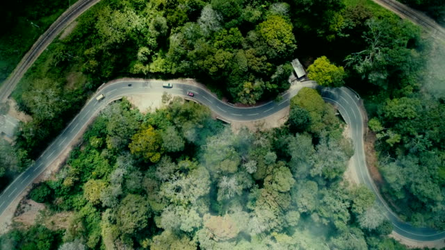 aerial view of  cars on the road among tea plantations - sri lanka stock videos & royalty-free footage