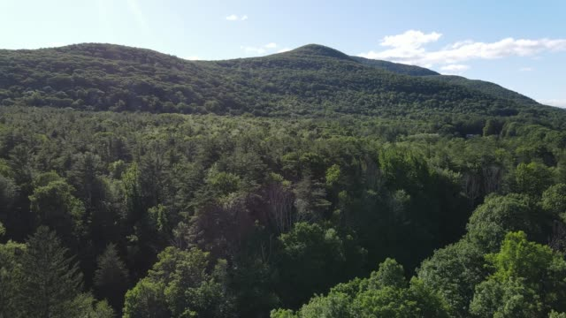 aerial view of catskill mountains in new york - appalachia stock videos & royalty-free footage