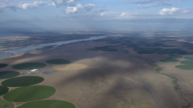 aerial view of center pivot irrigated circular fields, walla walla, washington state, united states of america. - irrigation equipment stock videos & royalty-free footage