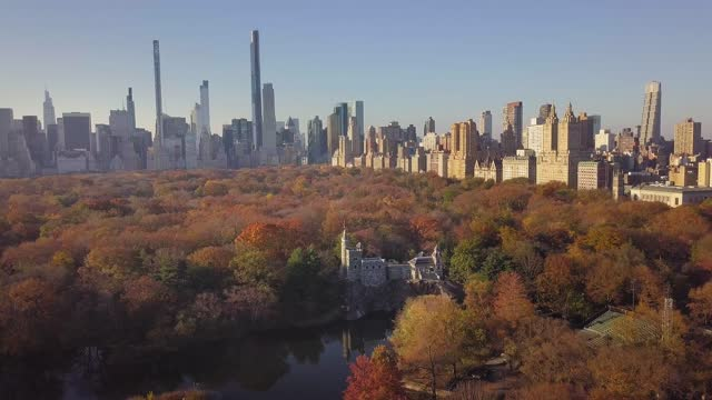 aerial view of central park in new york, usa - international landmark stock videos & royalty-free footage