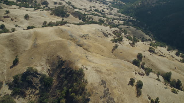 aerial view of chaparral covered foothills in the ohlone wilderness area, northern california. - wilderness area stock videos & royalty-free footage