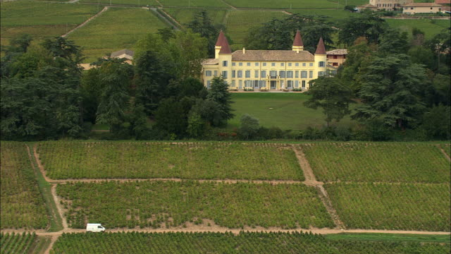 ws aerial view of chateau with brouilly vineyard, beaujolais, rhone-alpes, france - rhone alpes stock videos & royalty-free footage