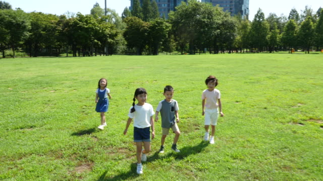 Aerial view of children walking in summer at Seoulforest (the third largest park in Seoul city)