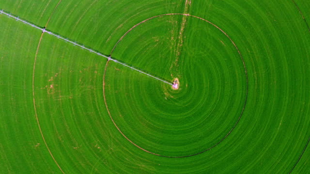 aerial view of circular crop field - concentric stock videos & royalty-free footage