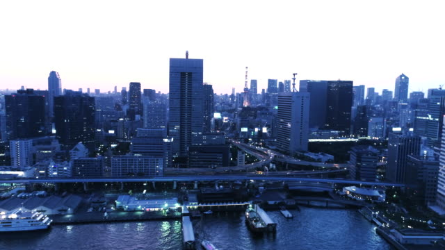 Aerial view of cityscape in Tokyo at dusk