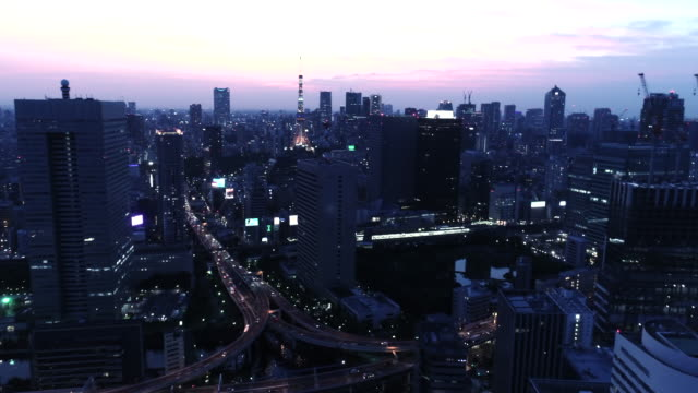 aerial view of cityscape in tokyo at dusk - dusk点の映像素材/bロール