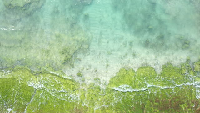 aerial view of clear wave - muschio video stock e b–roll