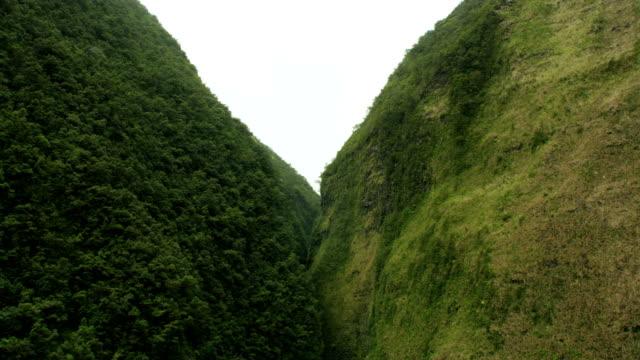 aerial view of cliffside rainforest jurassic coast hawaii - jurassic stock videos & royalty-free footage