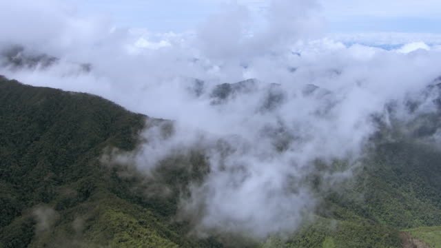 aerial view of cloud forest in mountains in colombia - medellin colombia stock videos & royalty-free footage
