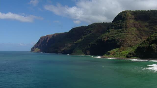 Aerial view of coastal cliffs of Ka Pele Forest Reserve on the Hawaiian Island of Kauai.