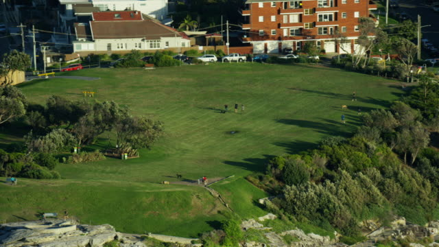 aerial view of coastal walk at bondi bay - natural parkland stock videos & royalty-free footage