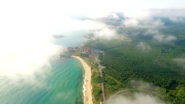 vídeos de stock, filmes e b-roll de vista aérea de 4k de costa - área arborizada