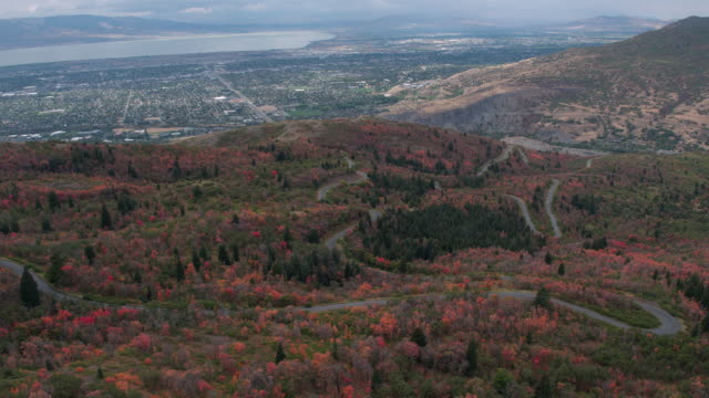 vídeos de stock e filmes b-roll de aerial view of colorful foliage as road winds through the trees - provo