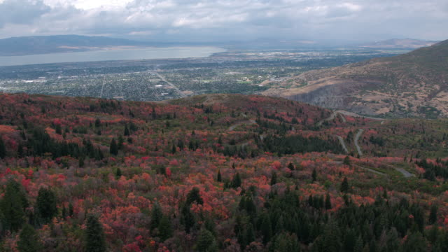 stockvideo's en b-roll-footage met aerial view of colorful foliage as road winds through the trees - provo