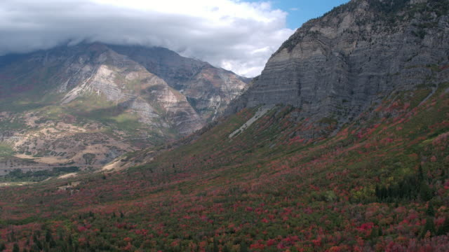 aerial view of colorful foliage in the shadow of tall mountains - provo stock videos and b-roll footage