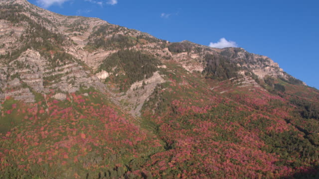 aerial view of colorful foliage up the side of a mountain - プロボ点の映像素材/bロール