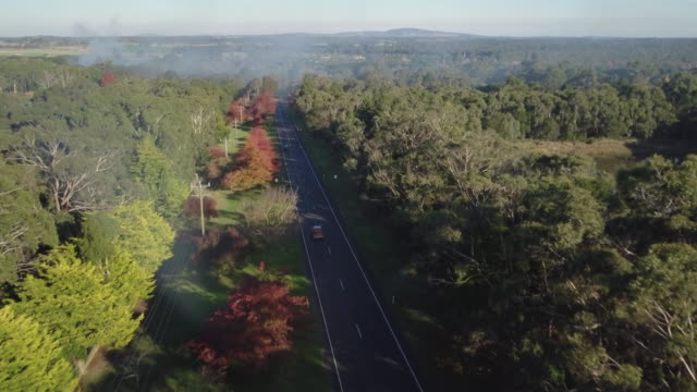 Aerial view of colourful trees, landscape and a road in autumn, Victoria, Australia