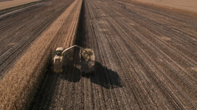 Aerial view of combine filling truck while cutting corn