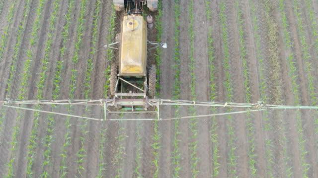 vídeos de stock, filmes e b-roll de aerial view of combine harvester gathering crops - ucrânia