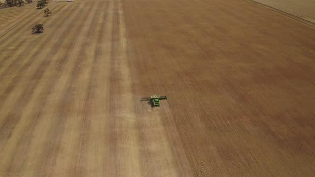 vídeos y material grabado en eventos de stock de aerial view of combine harvester working in field. - trigo