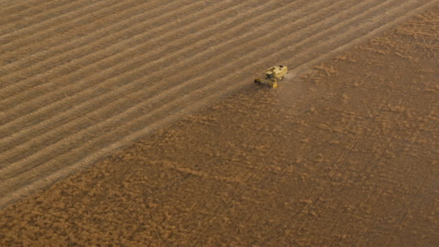 Z/O aerial view of combine harvester working in wheat field
